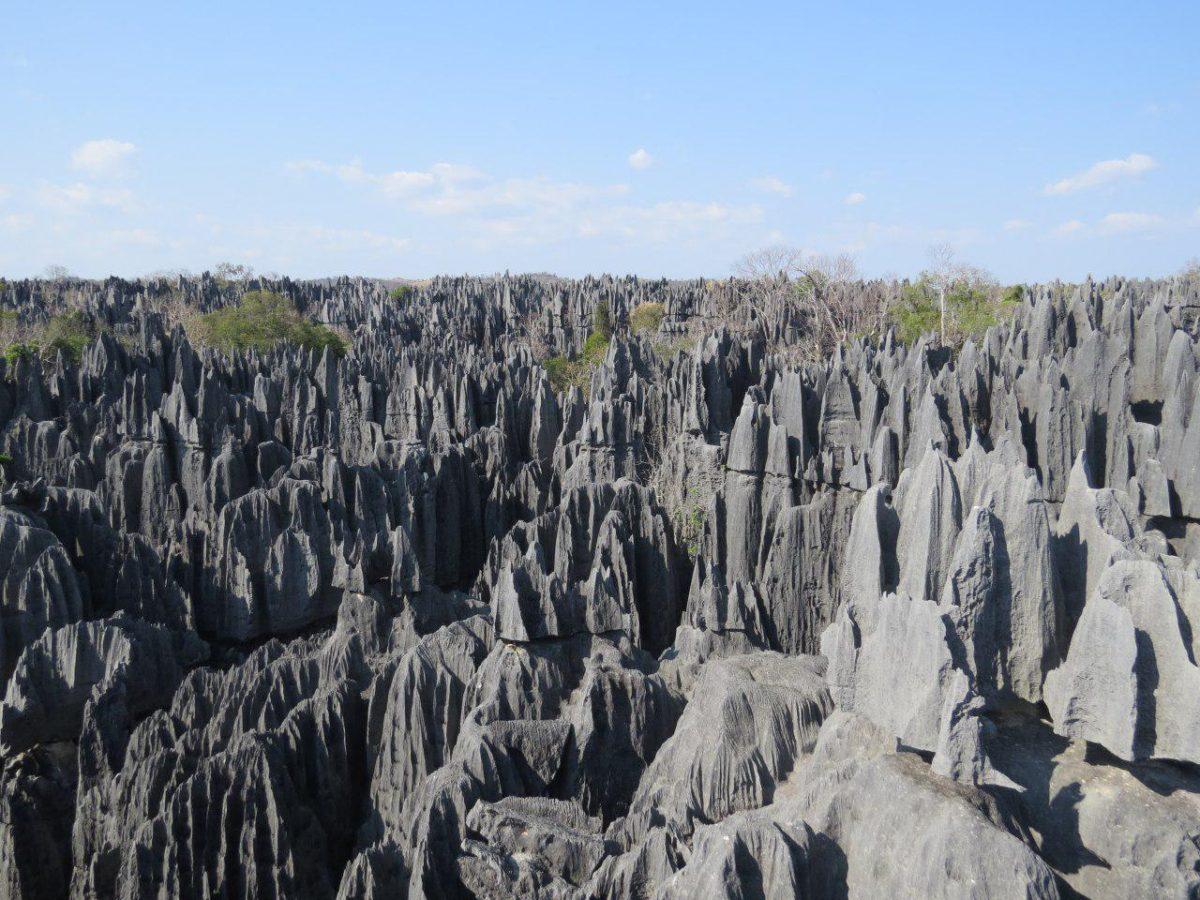 تور ماداگاسکار، بهترین سفر به ماداگاسکار