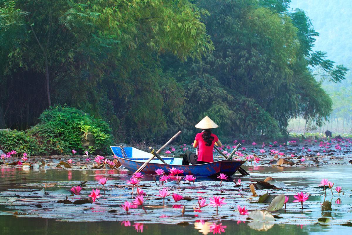 تور ویتنام، ویزای ویتنام، سفر به ویتنام، بهترین زمان سفر به ویتنام، جاذبه های دیدنی ویتنام، راهنمای سفر به ویتنام، سفر ویتنام، سفرنامه ویتنام